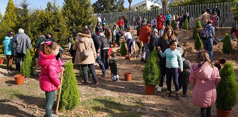 Este año, Multipaterna ha celebrado la décima edición de su Día del Árbol