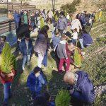 Cientos de personas disfrutaron con las actividades preparadas durante el Día del Árbol